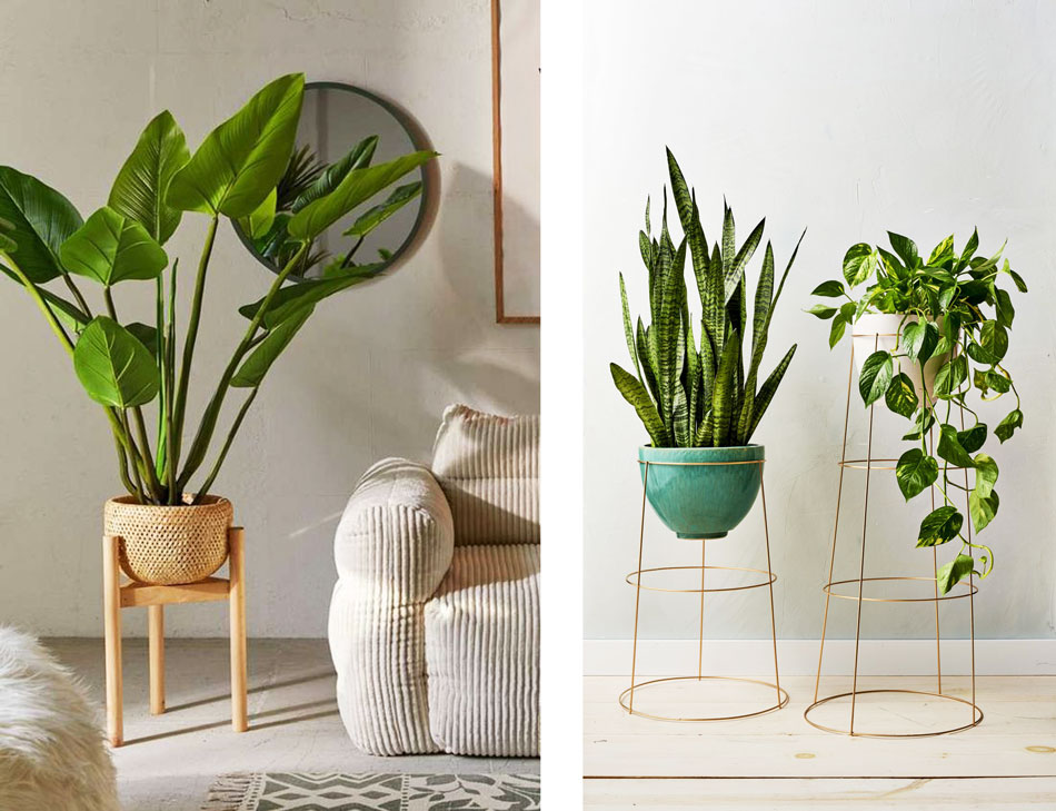 Taburetes y pedestales para plantas