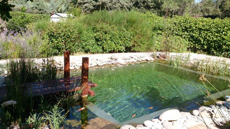 Aprovechamiento de espacios para instalación de piscinas naturales