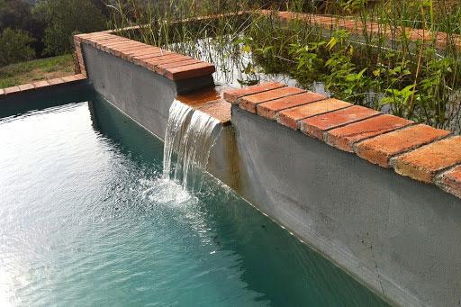 Salto de agua y plantas acuáticas para oxigenar