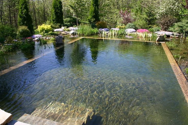 Grandes espacios acuáticos rodeados de vegetación