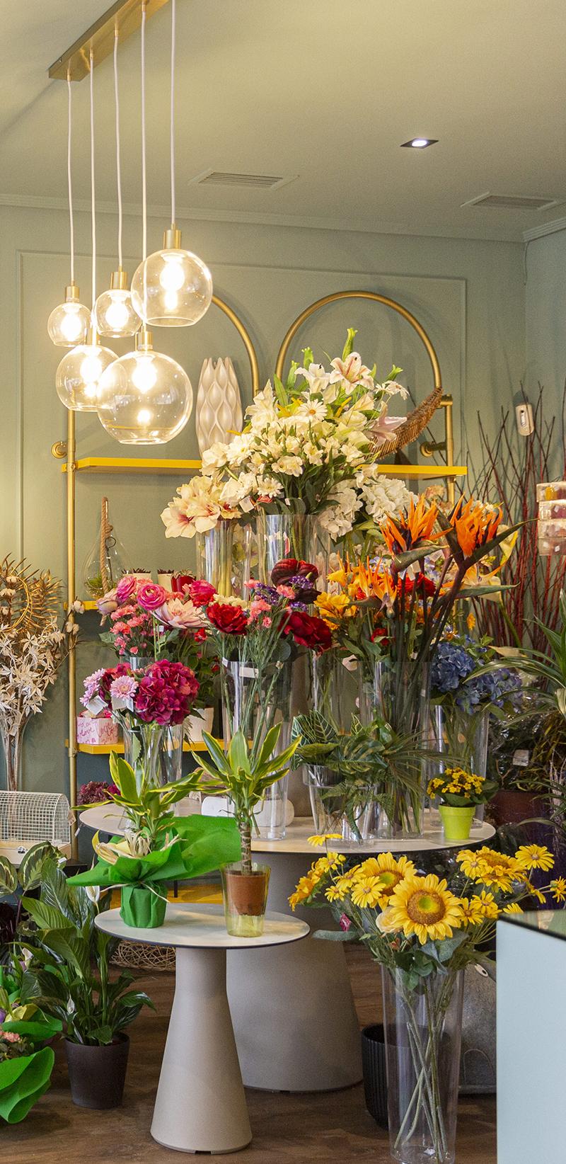 Iluminación en el interiorismo del negocio de la floristeria
